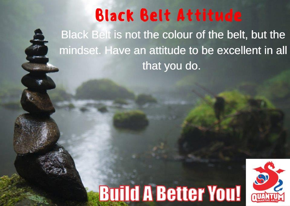 QMA - Black Belt Attitude 3