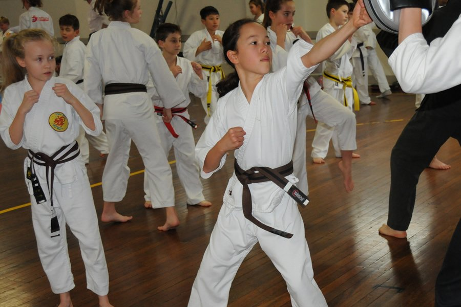 Martial Arts 9-14 years old