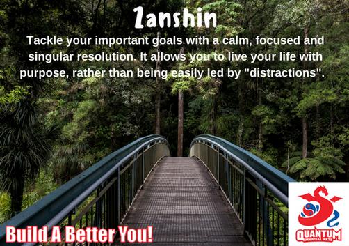 Zanshin - Quantum Martial Arts