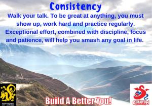 QMA - Consistency - Adults - NSJJ Branded
