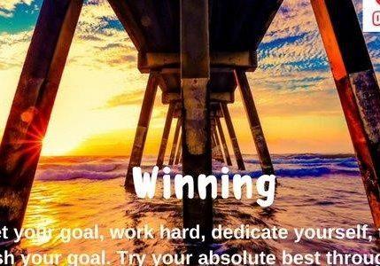 QMA - Winning
